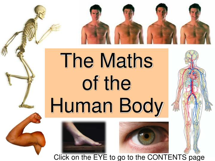 essay questions on the human body Human nature (essay sample) june 2, 2017 the frequently debated questions when discussing human parts of the body the spirit coordinates human feeling like.