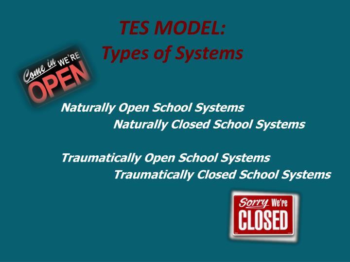 TES Model: