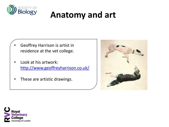 Geoffrey Harrison is artist in residence at the vet college.
