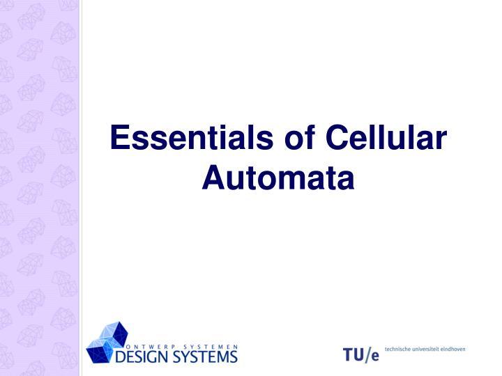 Essentials of Cellular Automata