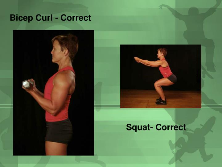 Bicep Curl - Correct