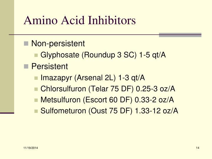Amino Acid Inhibitors