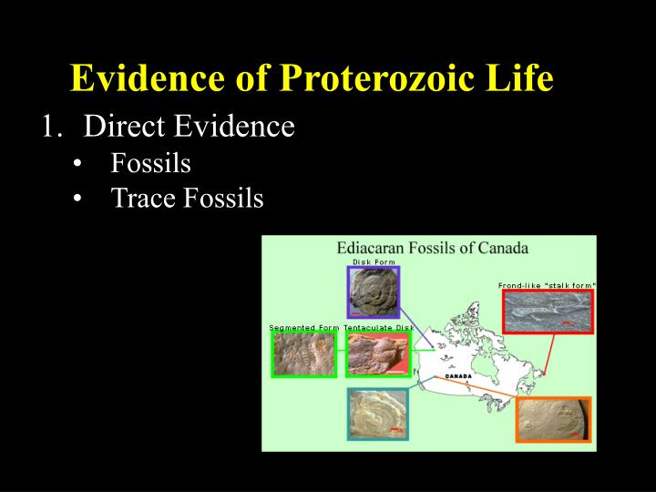 Evidence of Proterozoic Life
