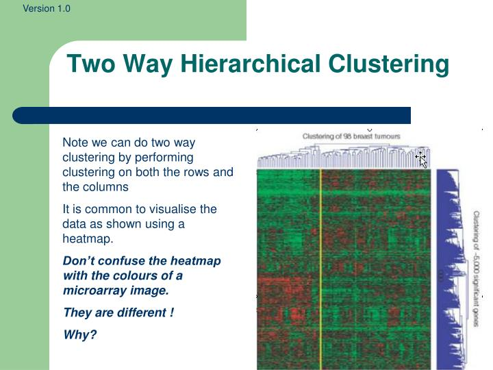 Two Way Hierarchical Clustering