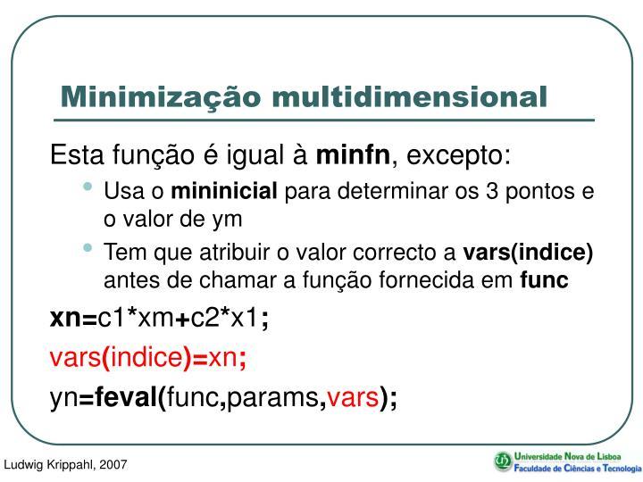 Minimização multidimensional
