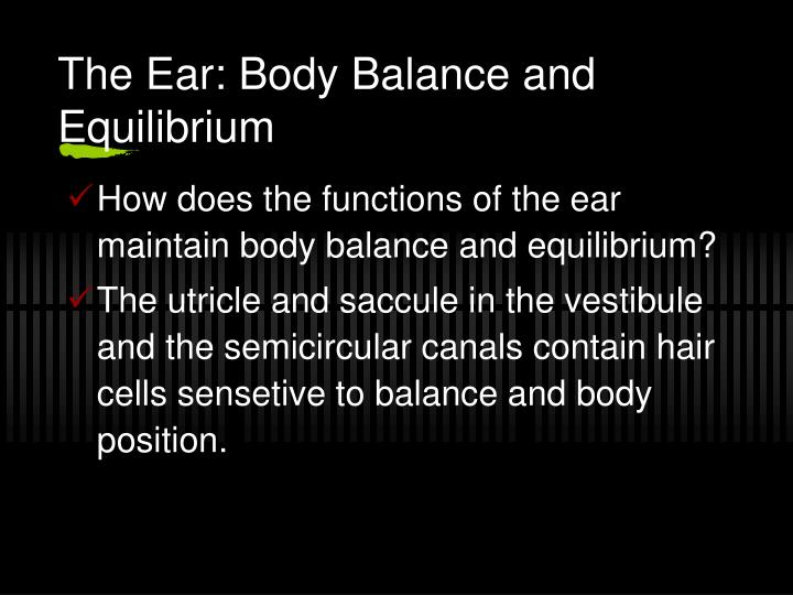 The Ear: Body Balance and Equilibrium