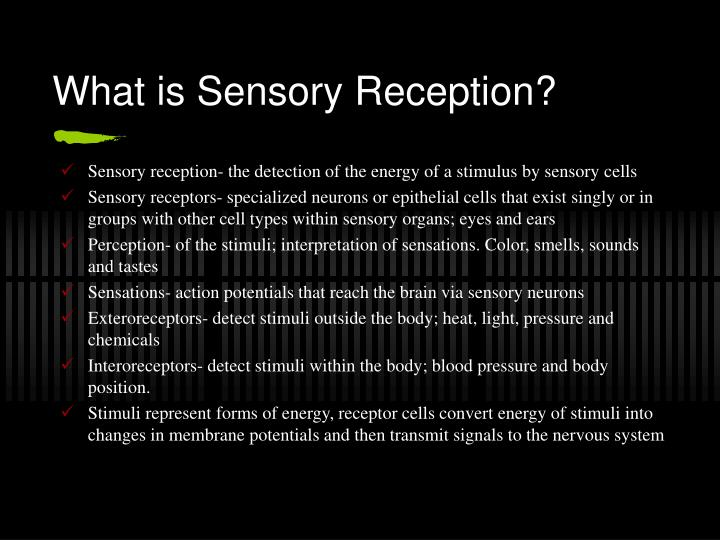 What is sensory reception