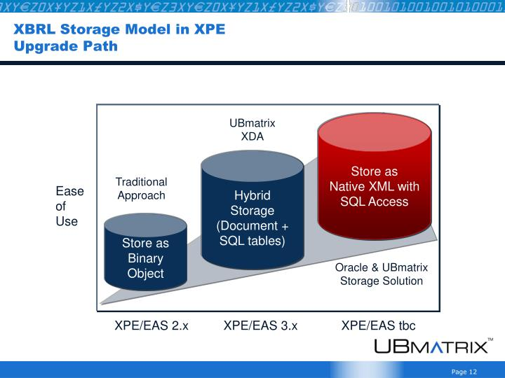 XBRL Storage Model in XPE