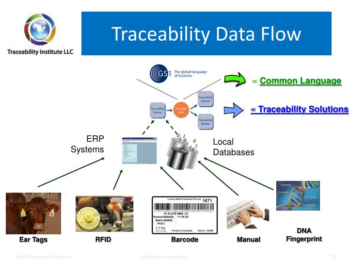 Traceability Data Flow