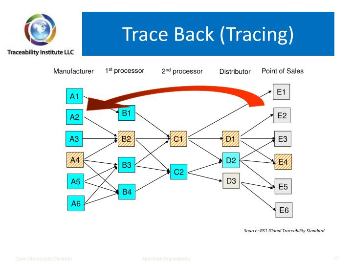 Trace Back (Tracing)