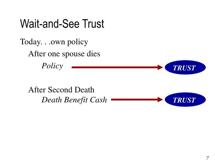 Wait-and-See Trust