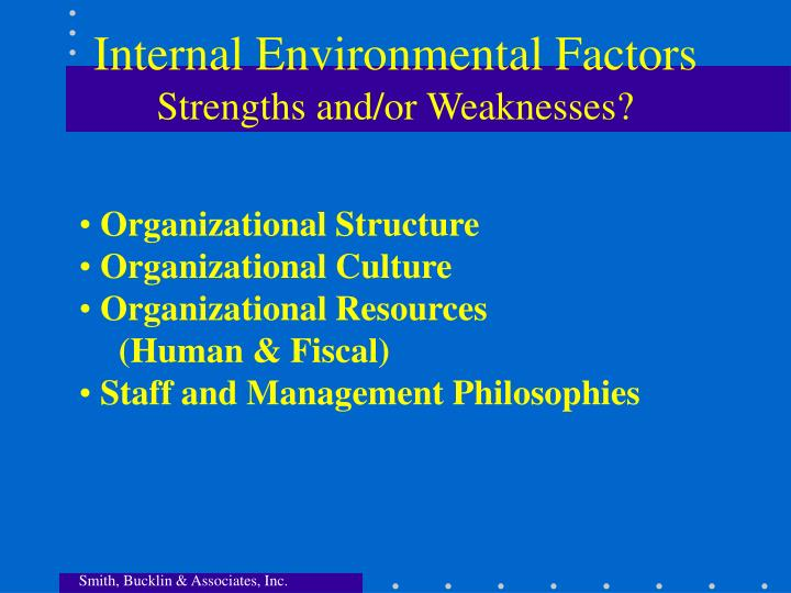 Internal Environmental Factors