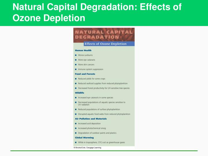 Natural Capital Degradation: Effects of Ozone Depletion