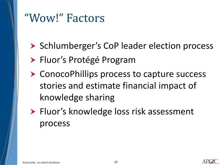 """""""Wow!"""" Factors"""
