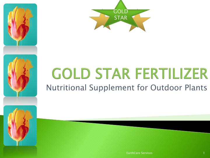 Gold star fertilizer