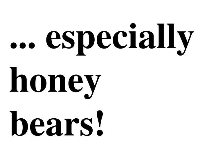 ... especially honey bears!