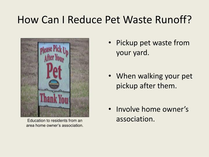 How Can I Reduce Pet Waste Runoff?