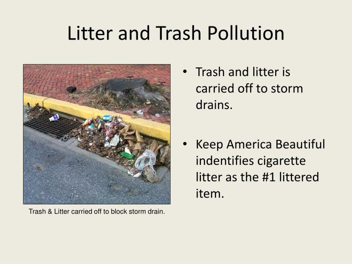 Litter and Trash Pollution