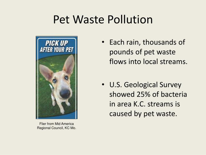 Pet Waste Pollution