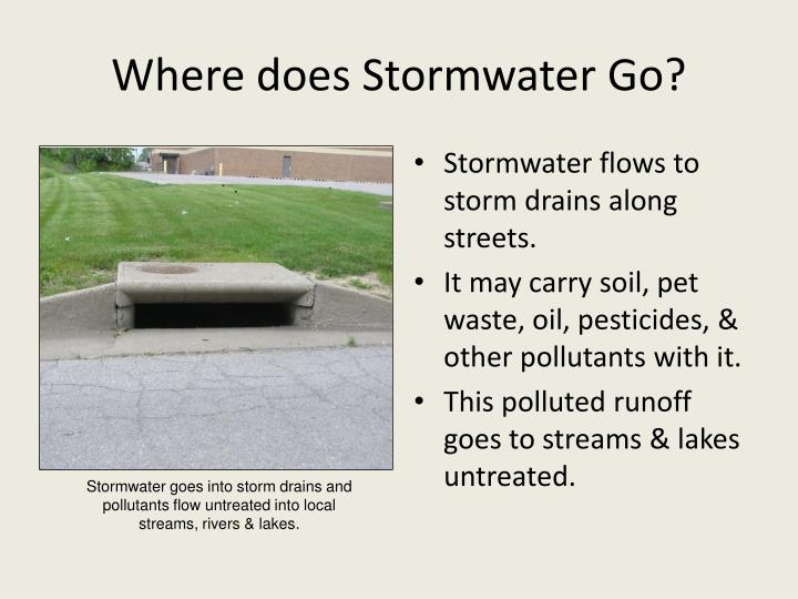 Where does Stormwater Go?