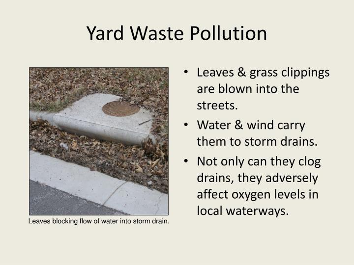 Yard Waste Pollution