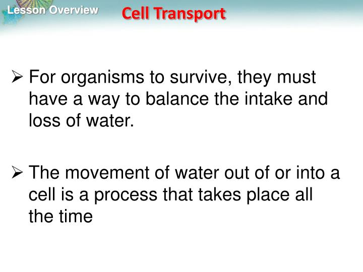 For organisms to survive, they must have a way to balance the intake and loss of water.