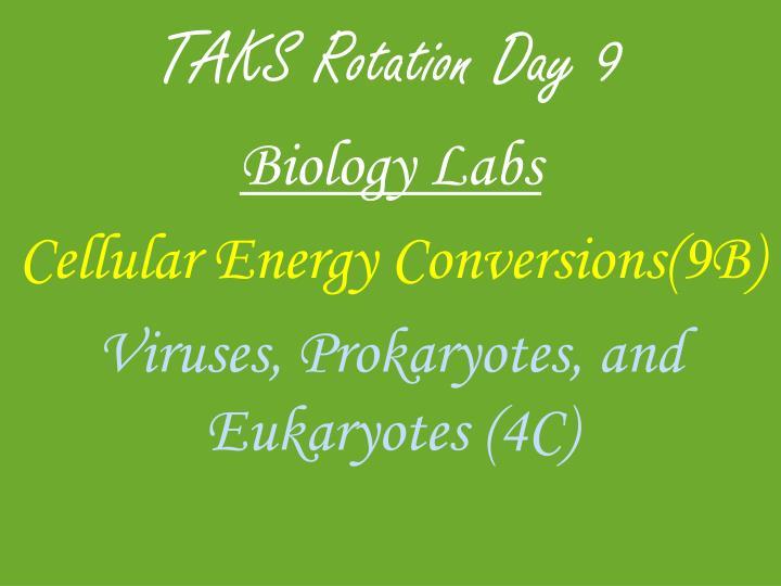 TAKS Rotation Day 9