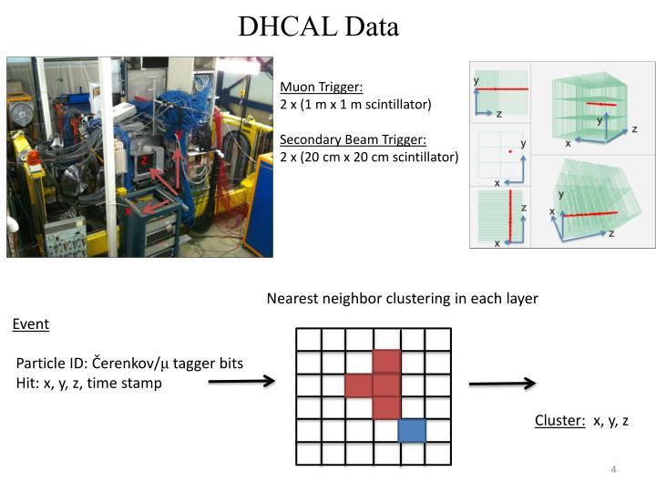 DHCAL Data