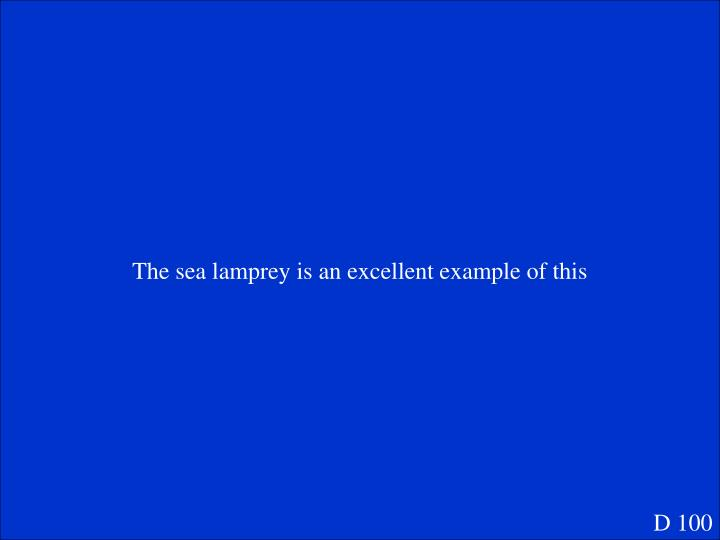 The sea lamprey is an excellent example of this