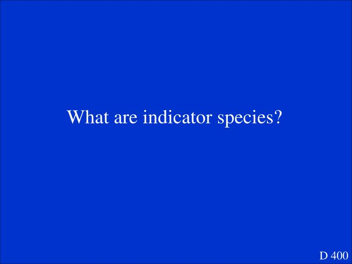 What are indicator species?