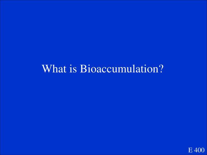 What is Bioaccumulation?