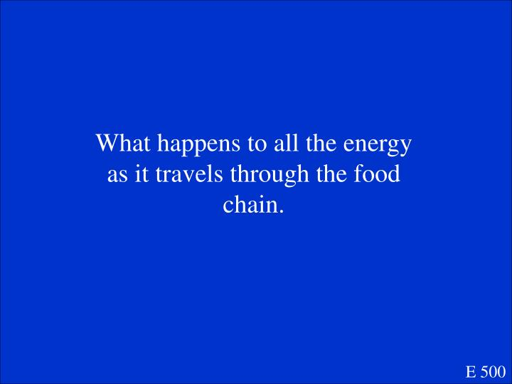 What happens to all the energy as it travels through the food chain.
