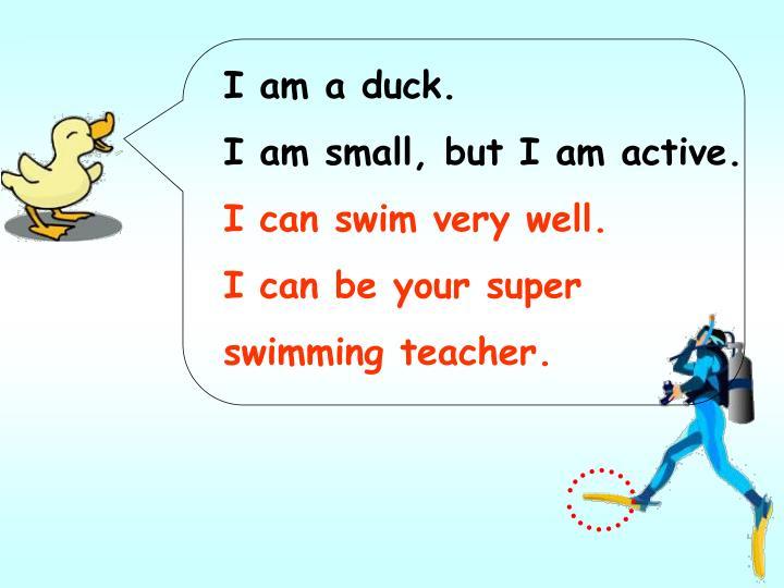 I am a duck.