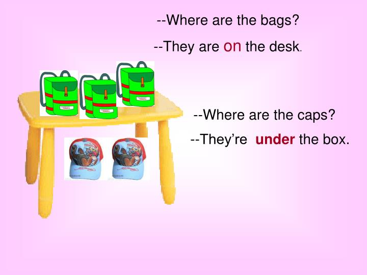 --Where are the bags?