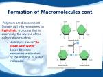 formation of macromolecules cont
