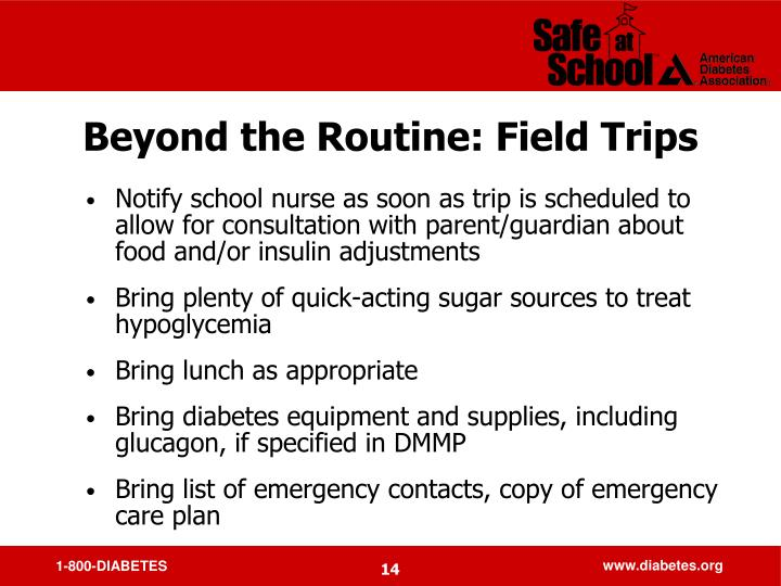 Beyond the Routine: Field Trips