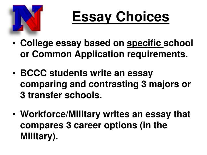 Essay Choices