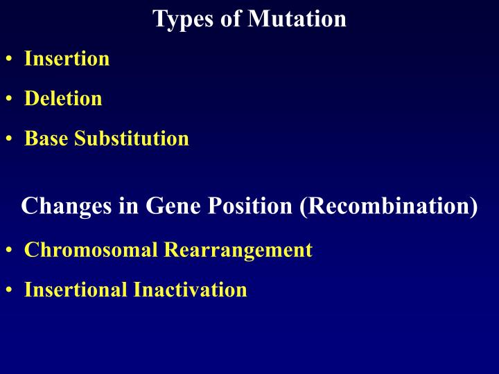 Types of Mutation