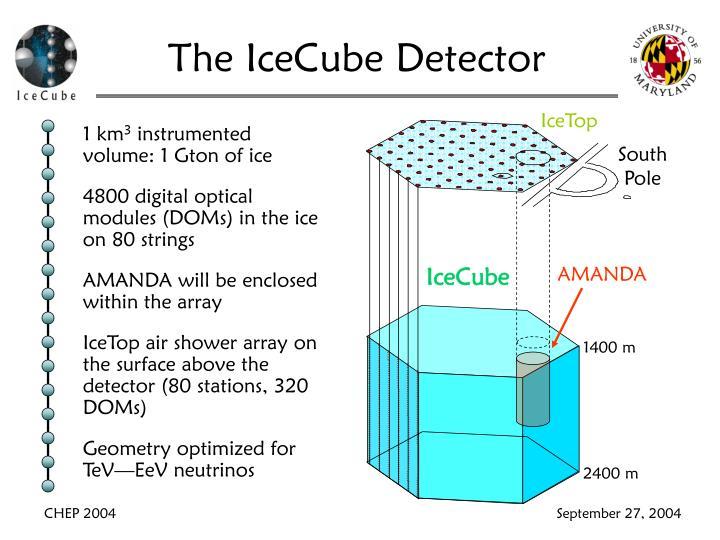 The IceCube Detector