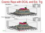 cosmic rays with dcal and ext trg