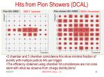 hits from pion showers dcal