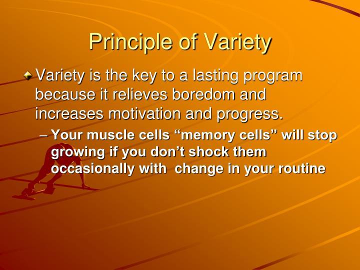Principle of Variety
