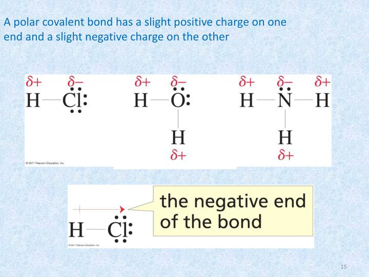 A polar covalent bond has a slight positive charge on one