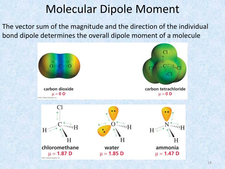 Molecular Dipole Moment