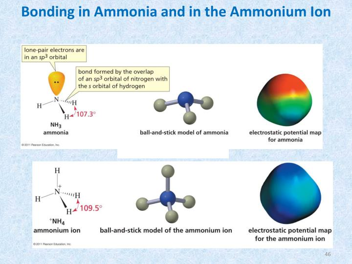 Bonding in Ammonia and in the Ammonium Ion