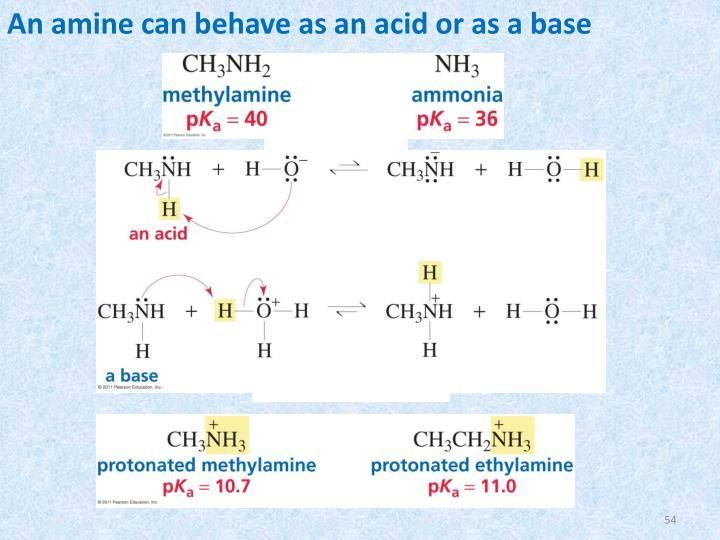 An amine can behave as an acid or as a base