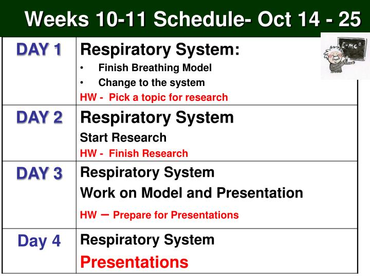 Weeks 10 11 schedule oct 14 25
