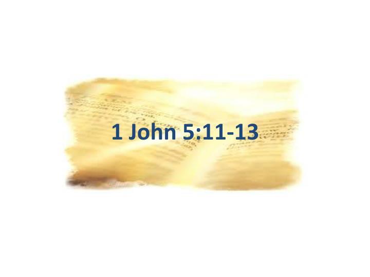 1 John 5:11-13
