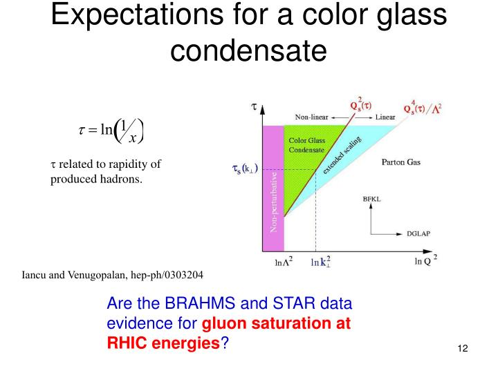 Expectations for a color glass condensate