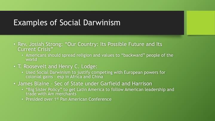 What is Social Darwinism?